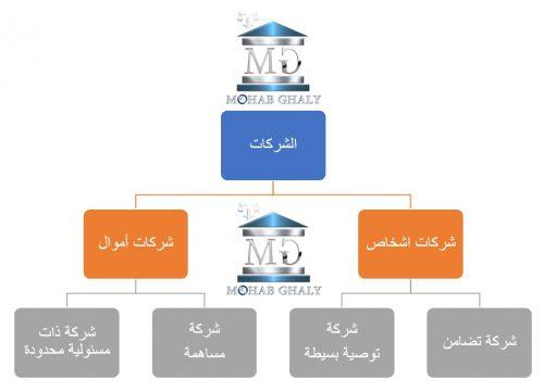 إجراءات تأسيس شركات الأموال ( شركة مساهمة – شركة ذات مسئولية محدودة – شركة توصية بالأسهم )